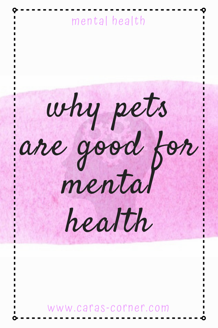 Why pets are good for mental health